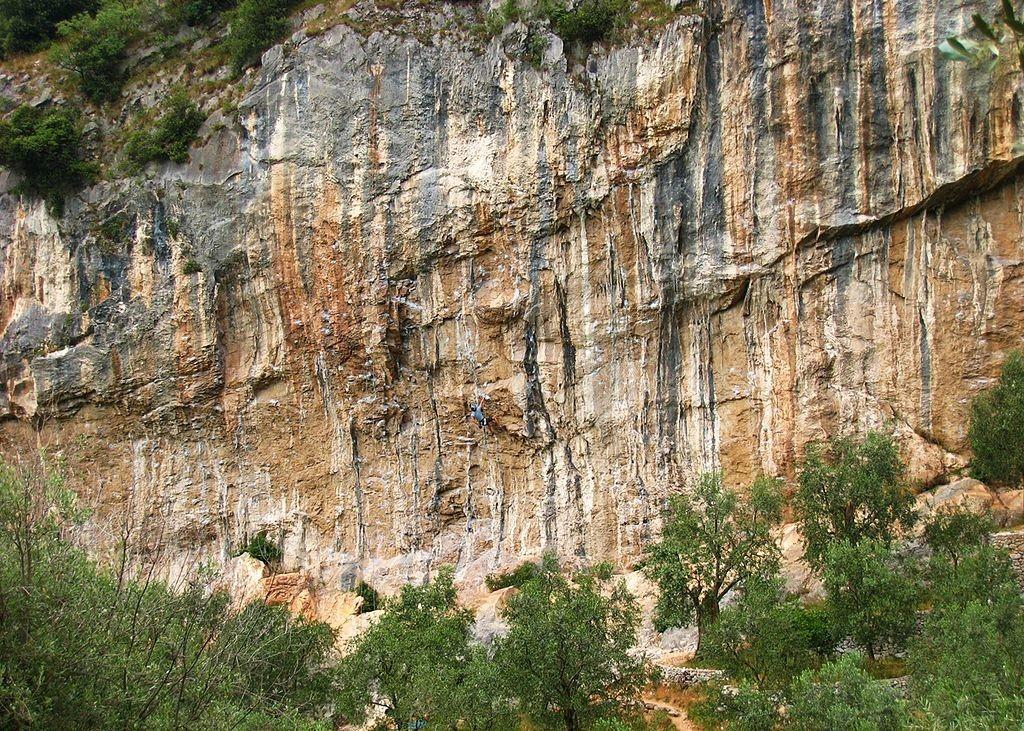 Massone w pełnej krasie. Fot: Thomas Ribière, www.wikiwand.com